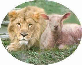 LION-LAMB CHRIST IN OLD TESTAMENT